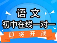 初中语文在线一对一课程